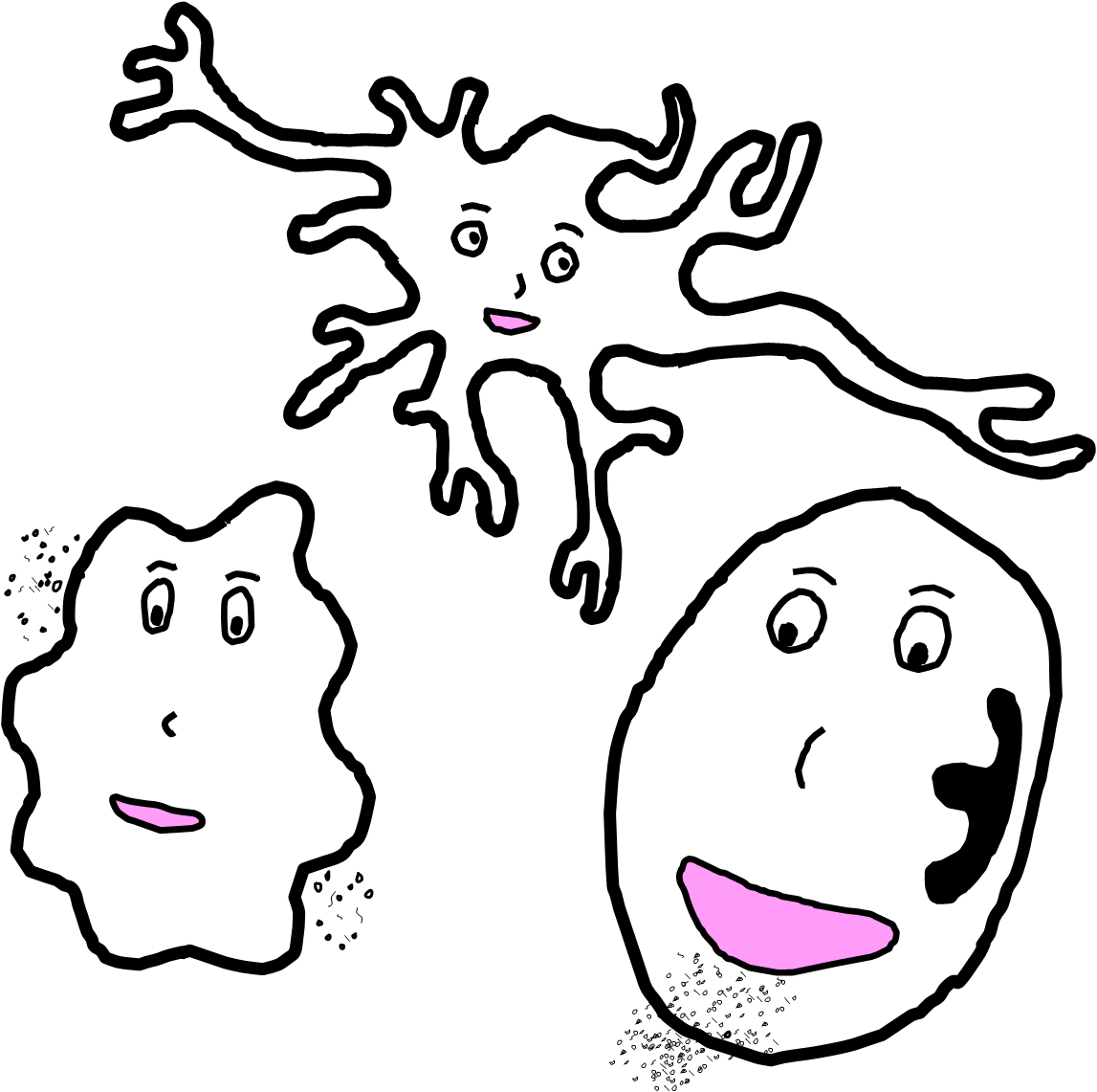 white blood cells.png