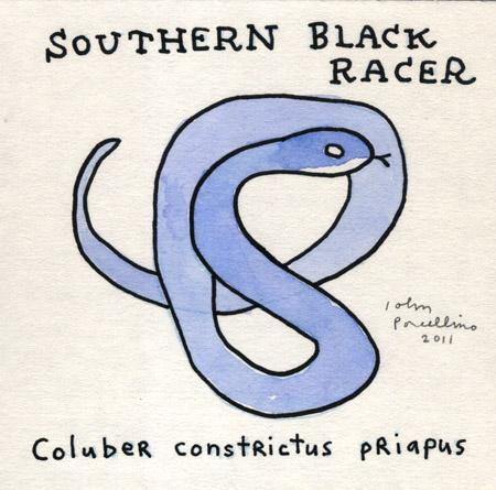JohnP-SouthernRacer.jpg