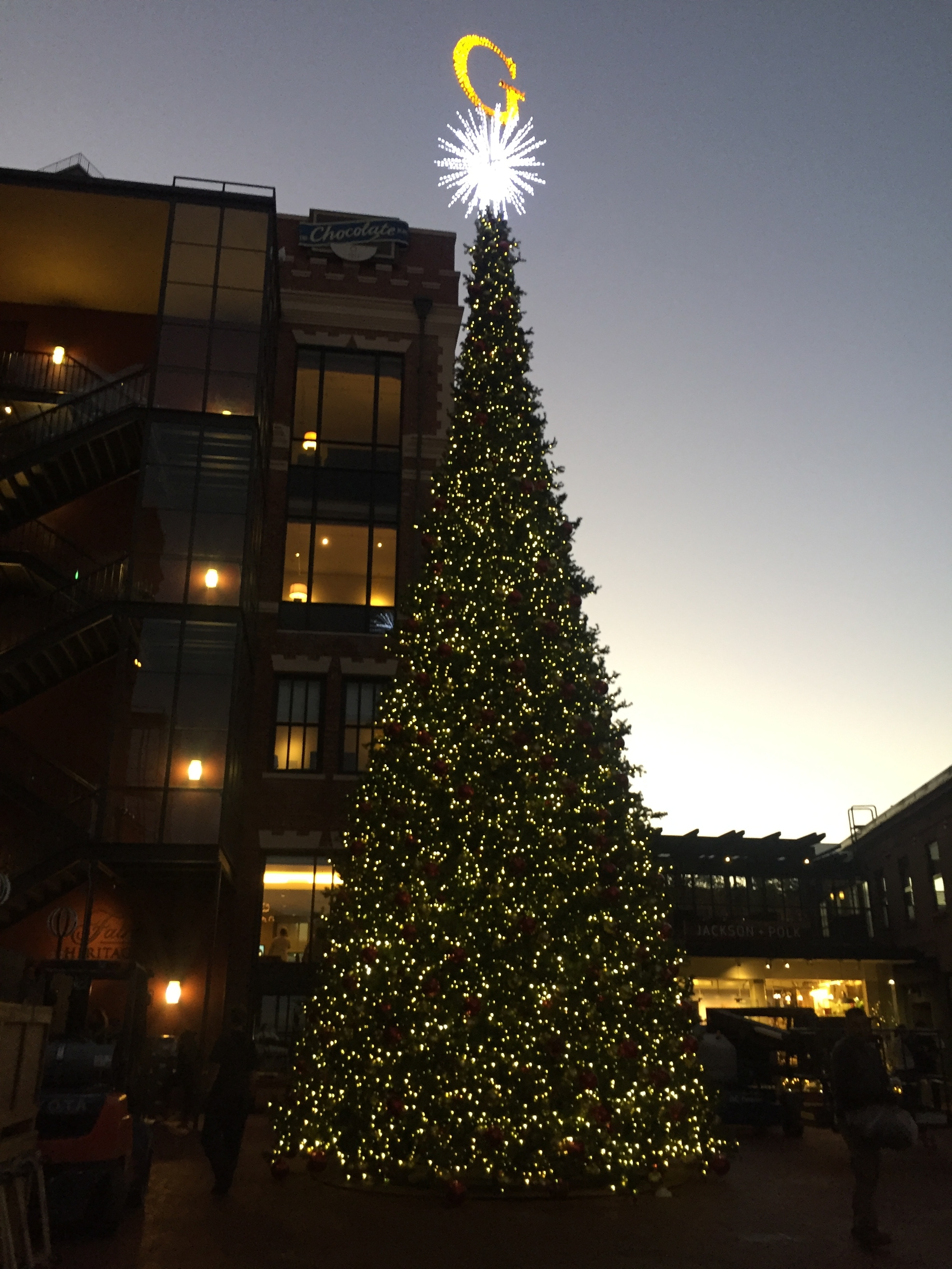 Christmas installations at various SF Bay area locations such as Ghirardelli Square, Crocker Galleria, JW Marriott, Stonestown Galleria, Heart of the Valley Pediatric Cardiology, Del Monte Center.