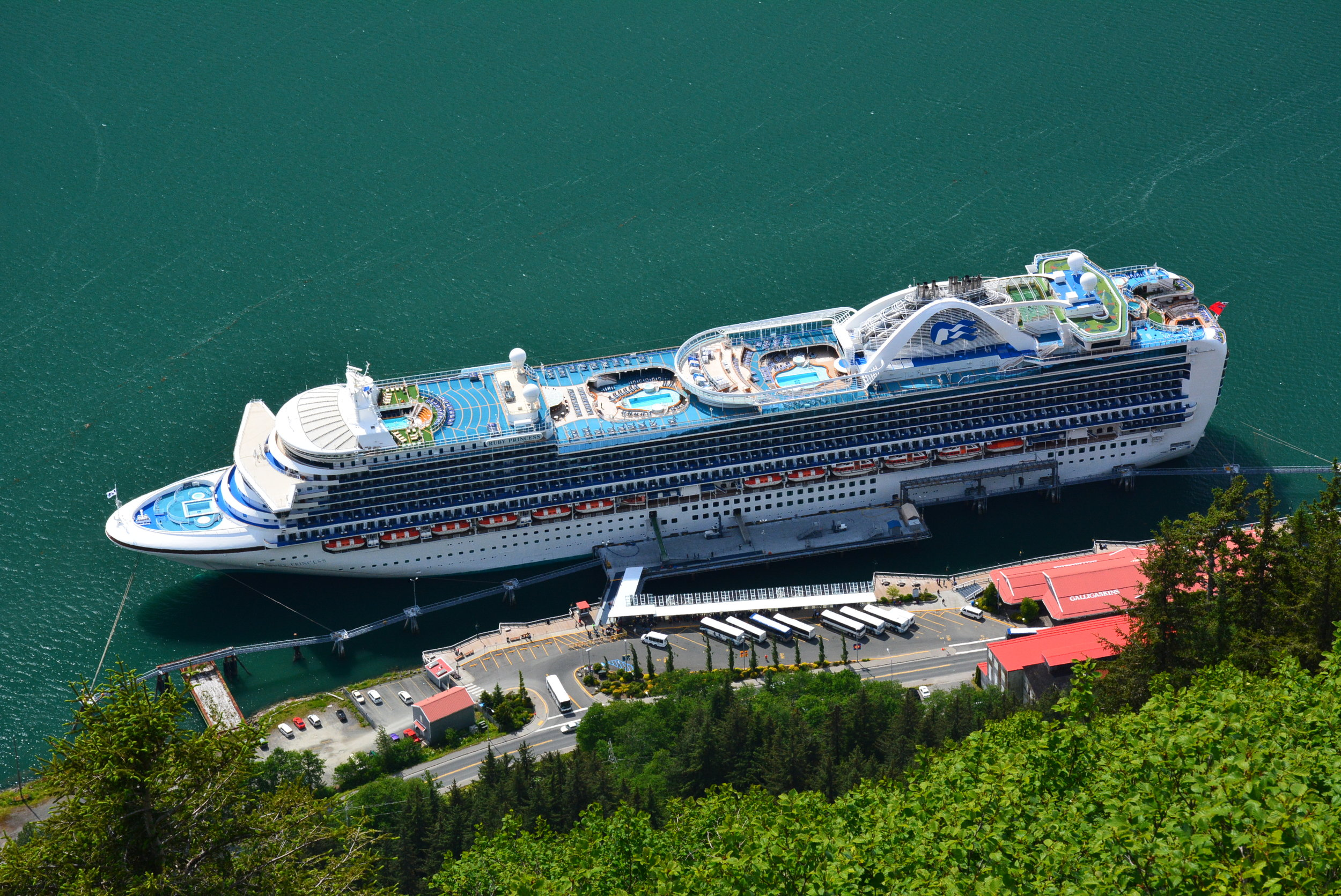 Ruby Princess from Mt. Roberts