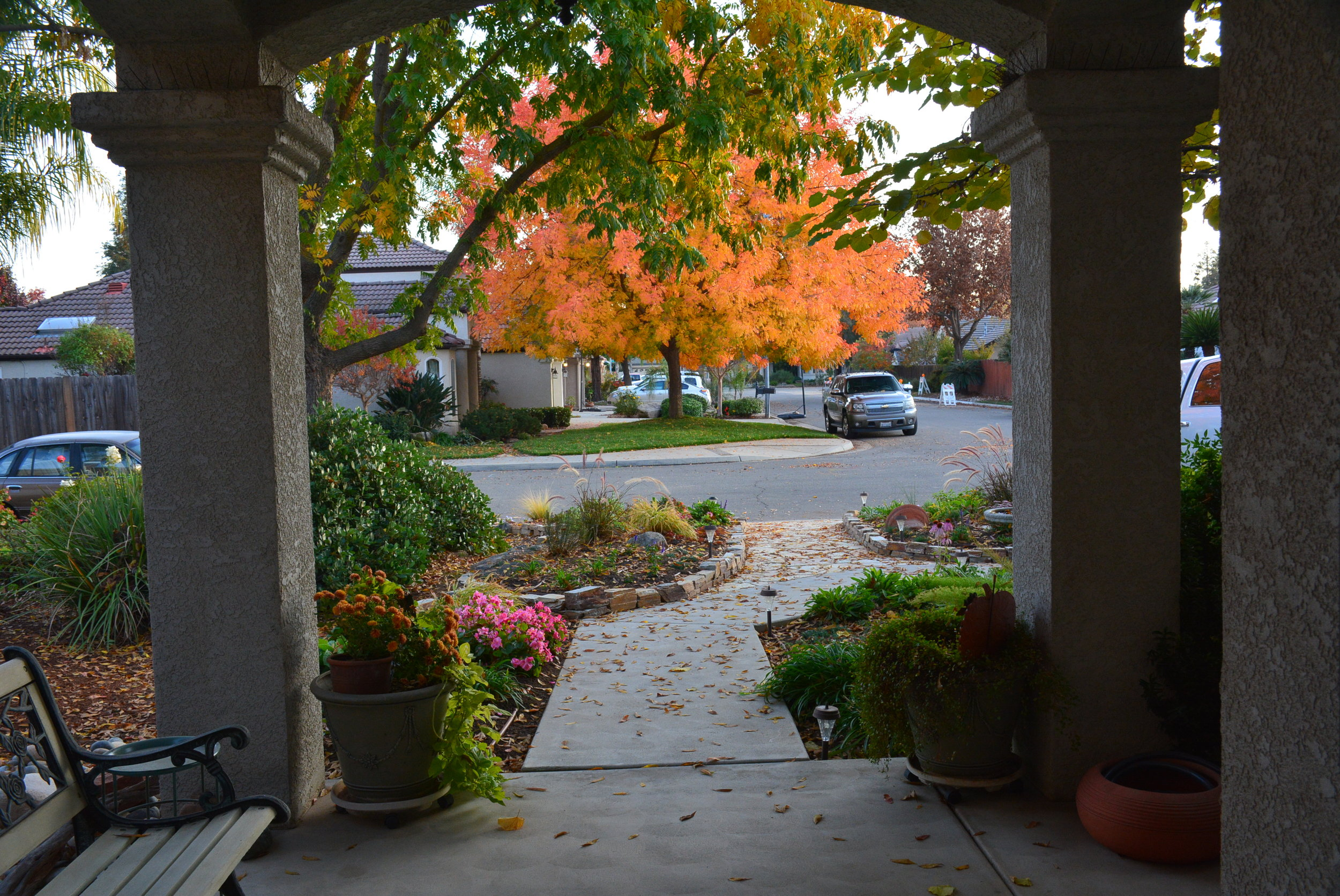 11/19/17- The view from our front door