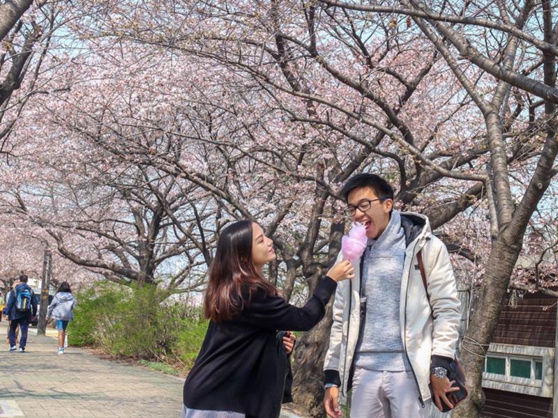 Anyeong Korea -