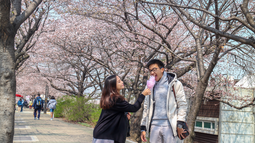 Korea I - March 2016