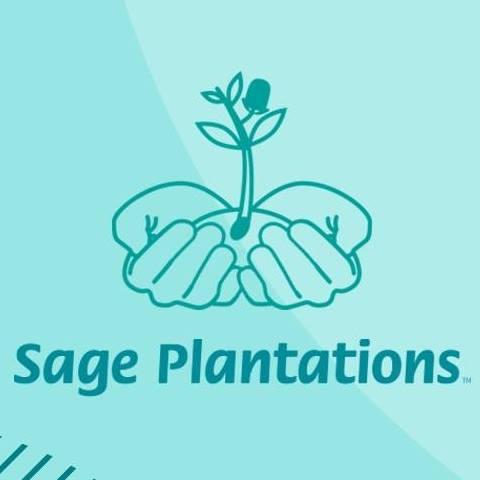 Sage Plantations.jpg
