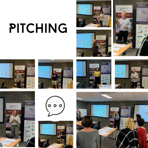 Connect Regional Innovation Hub Pitching