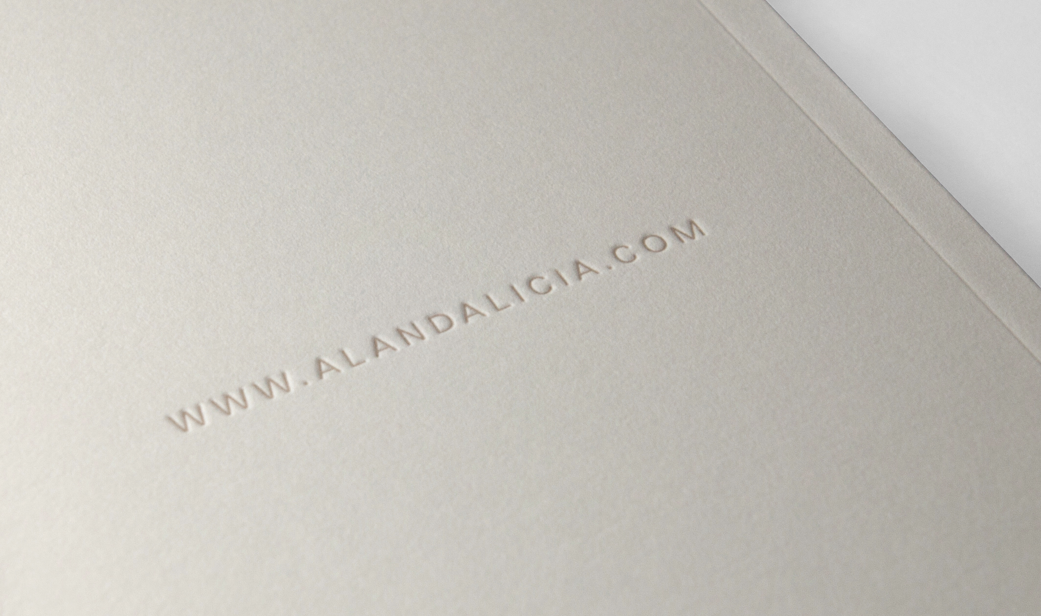 Alicia_Feat7_book3.jpg