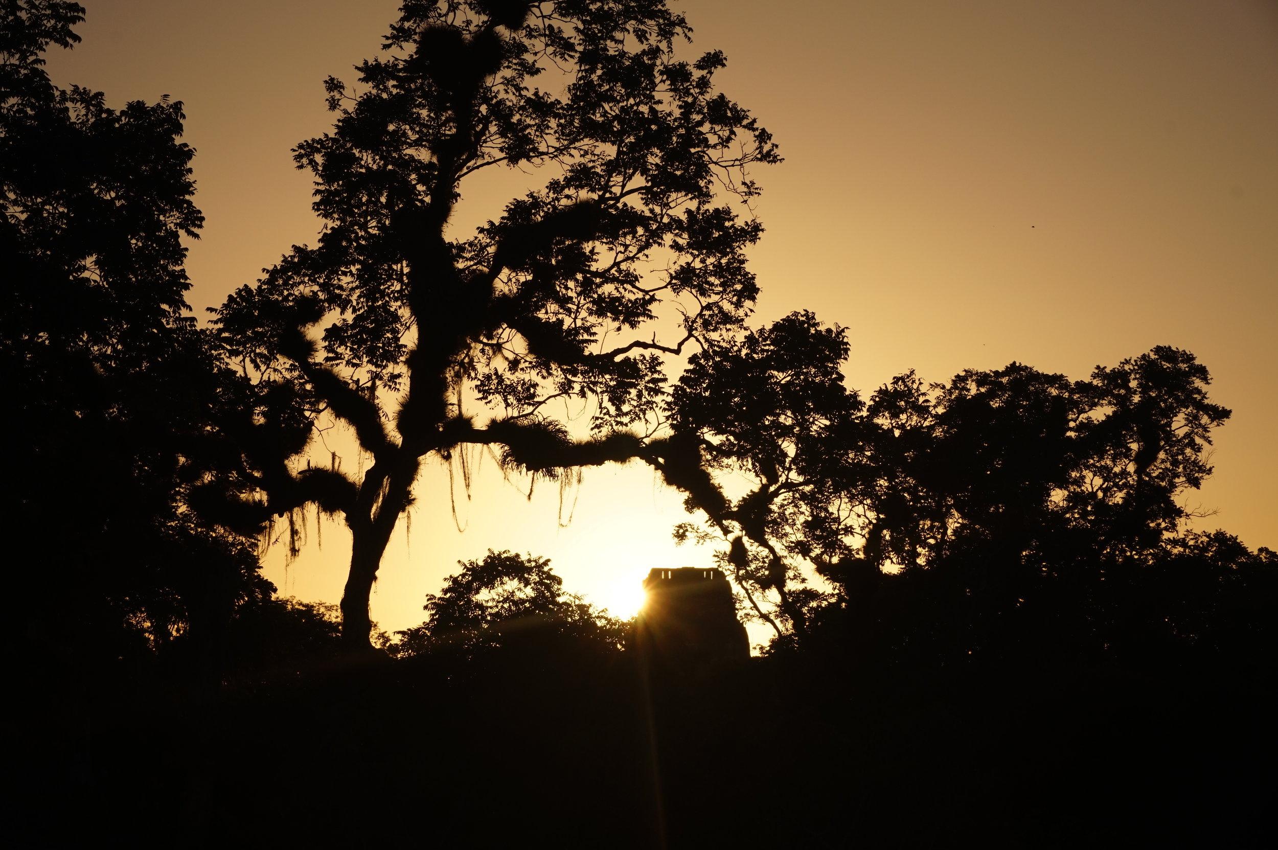 Camping at the tikal ruins and watching the sunset