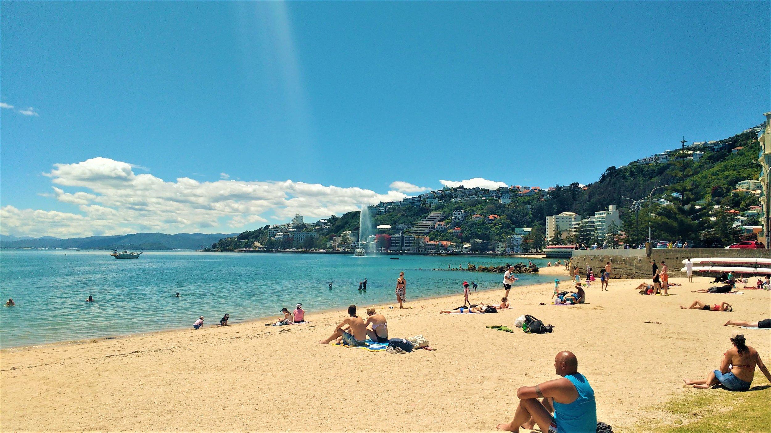 Oriental Bay, Wellington - free things to do in Wellington in summer!