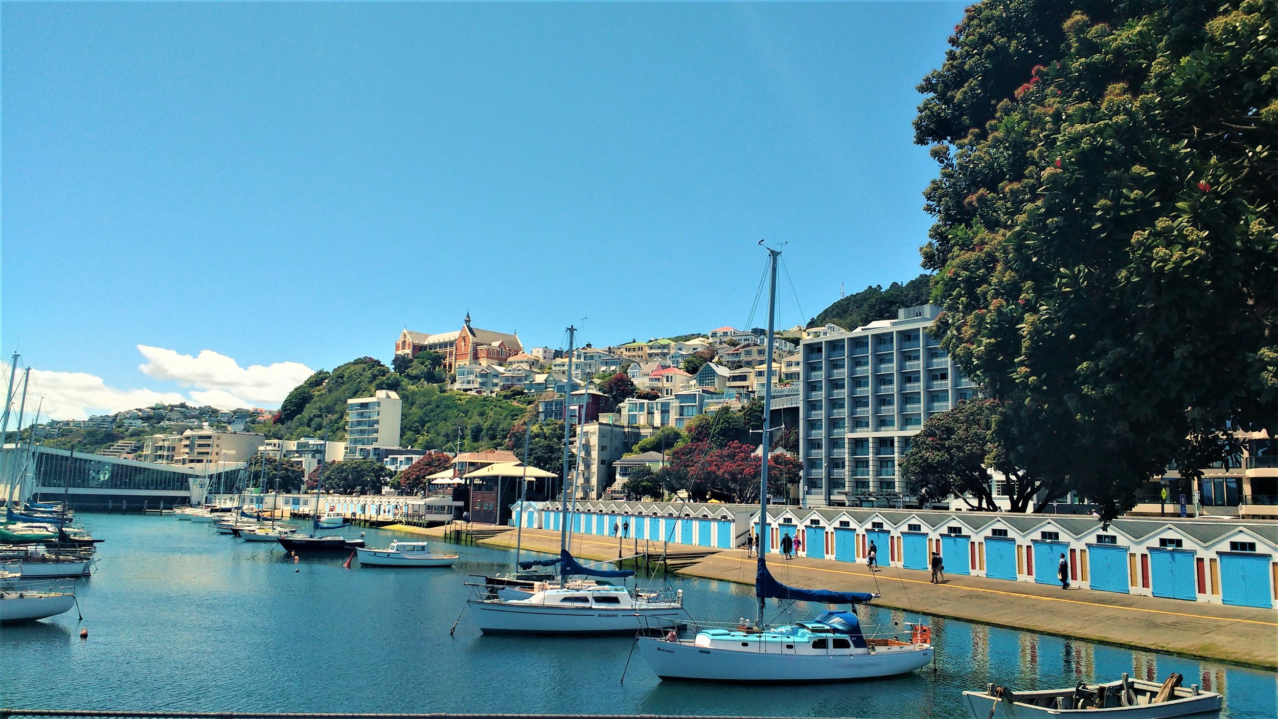 The wellington waterfront, one of the best free activities in Wellington, New Zealand