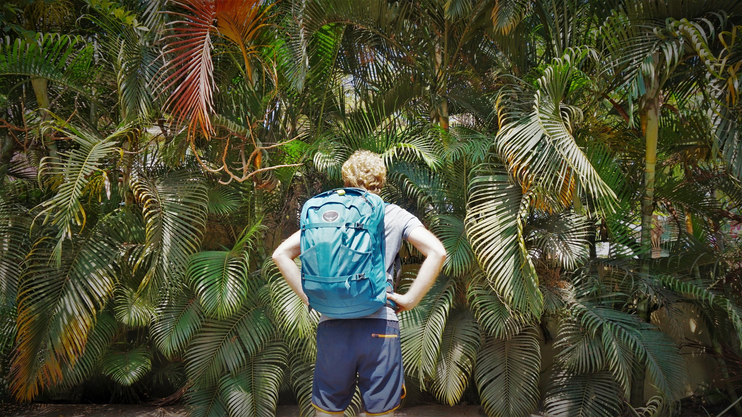 best carry on backpack for travel - osprey farpoint 40L
