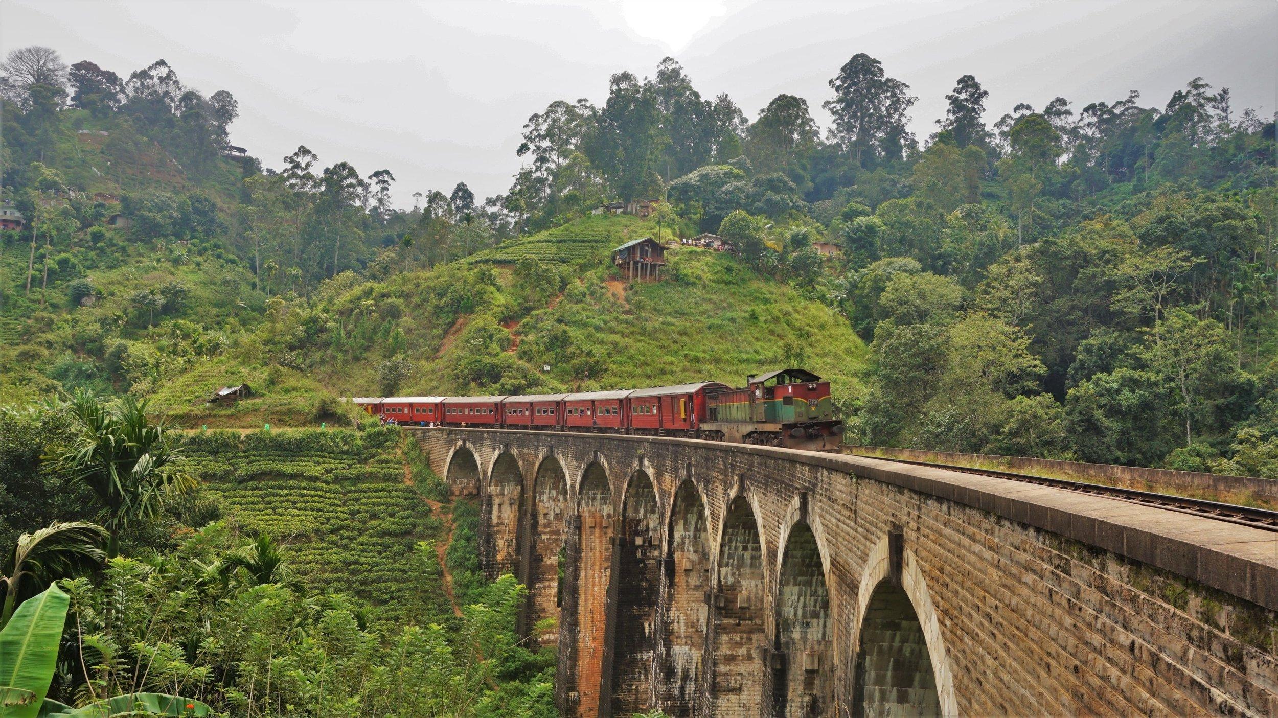 train coming over the nine arch bridge in ella, sri lanka