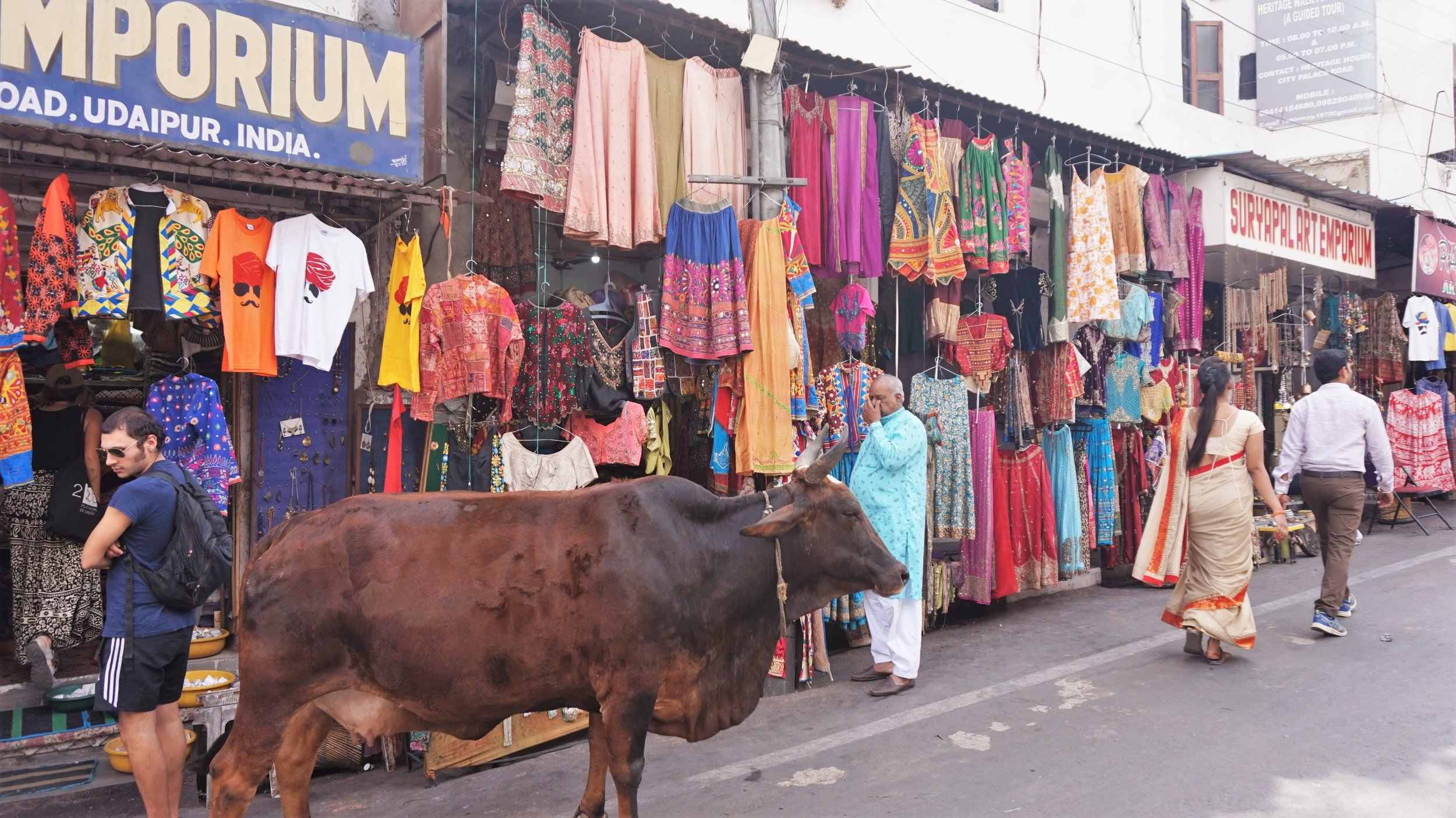 There are many places to visit in Udaipur if you want to find some nice clothing.