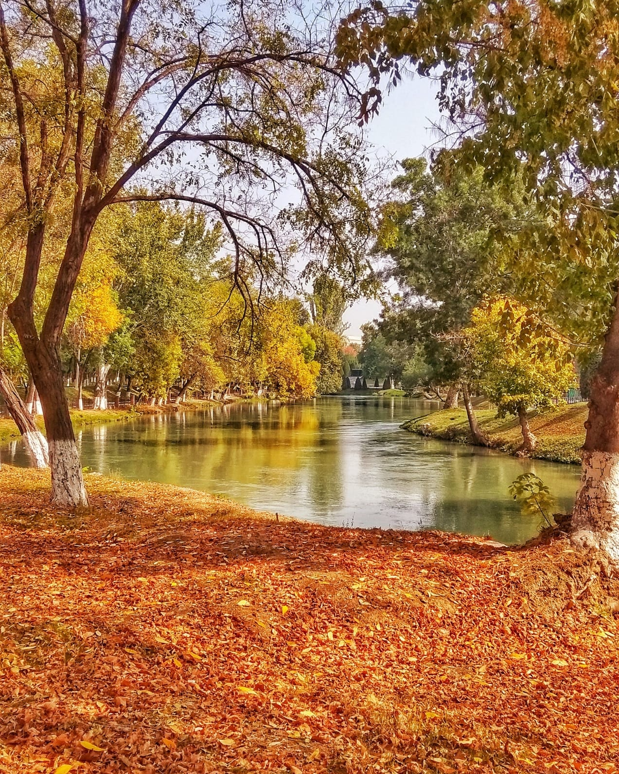 There are many parks in Tashkent, going for a walk in one of the beautiful parks is one of the best things to do in Tashkent, Uzbekistan.