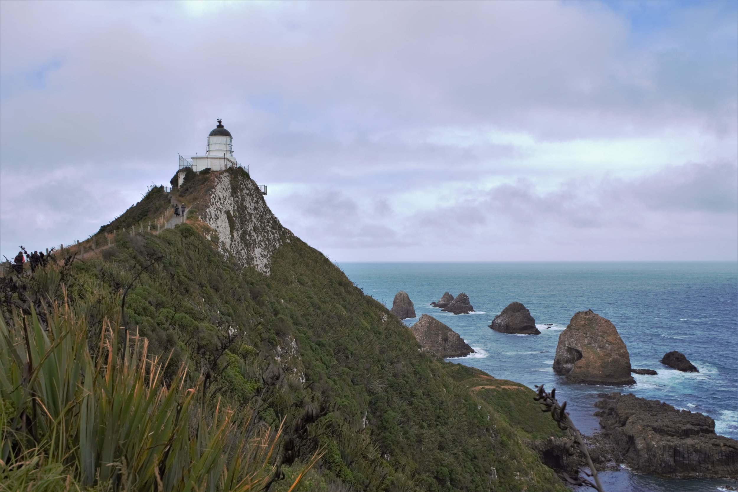 Nugget Point Lighthouse is one of the best things to see during your 3 day Catlins itinerary.