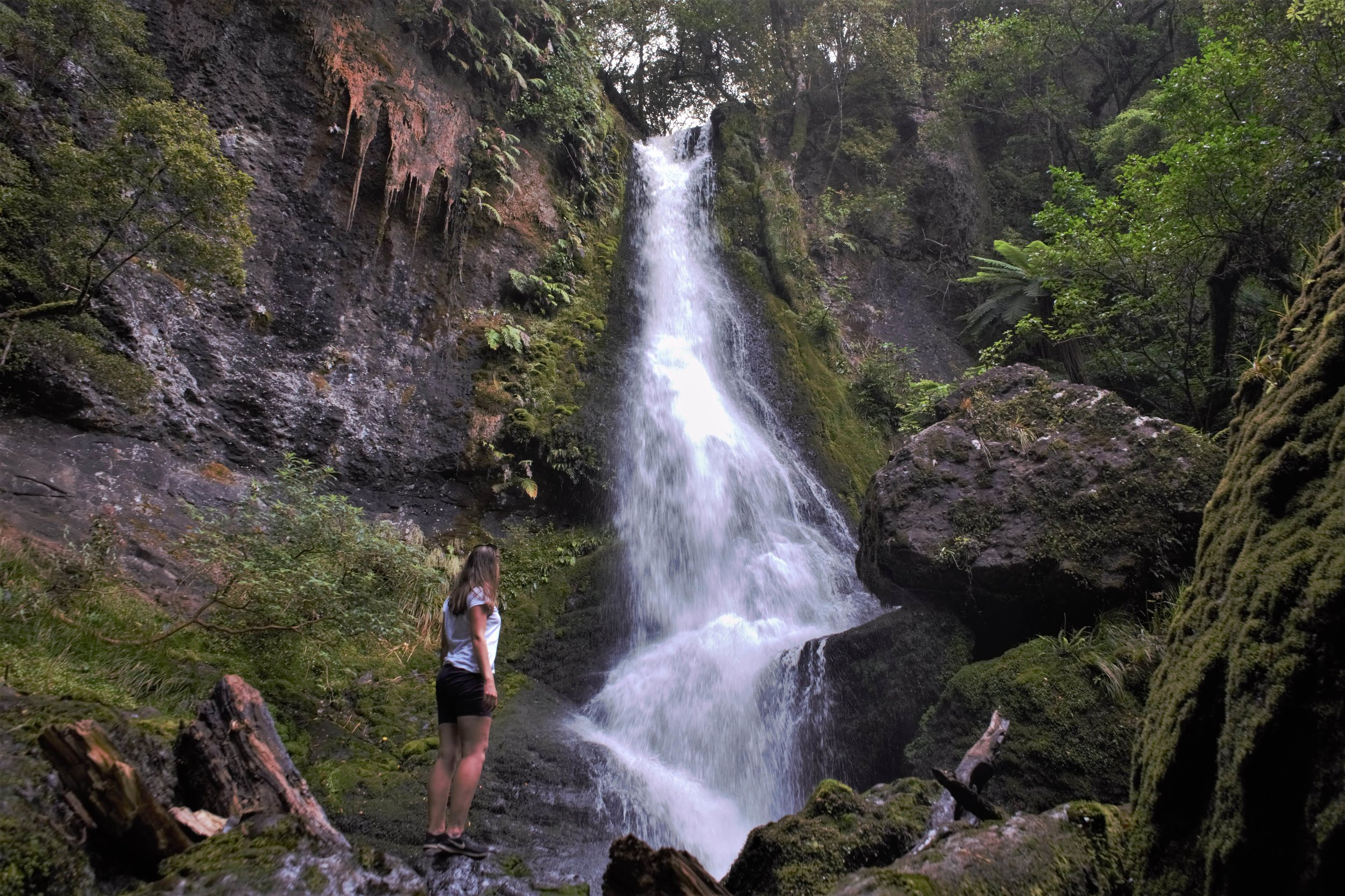 Include some of the beautiful waterfalls in your three day Catlins itinerary.