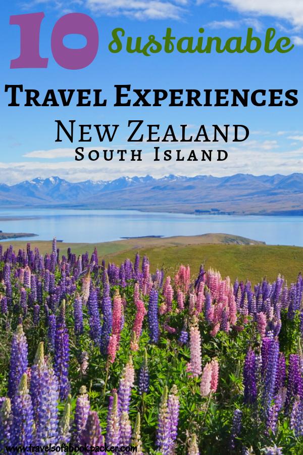 Wanting to experience the best of sustainable travel in New Zealand? These incredible experiences are ethical, sustainable and show you the whole different side of the South Island! #nz #newzealand #travel #southisland #sustainable #ethical #ethicaltravel #sustainabletravel #travelexperience