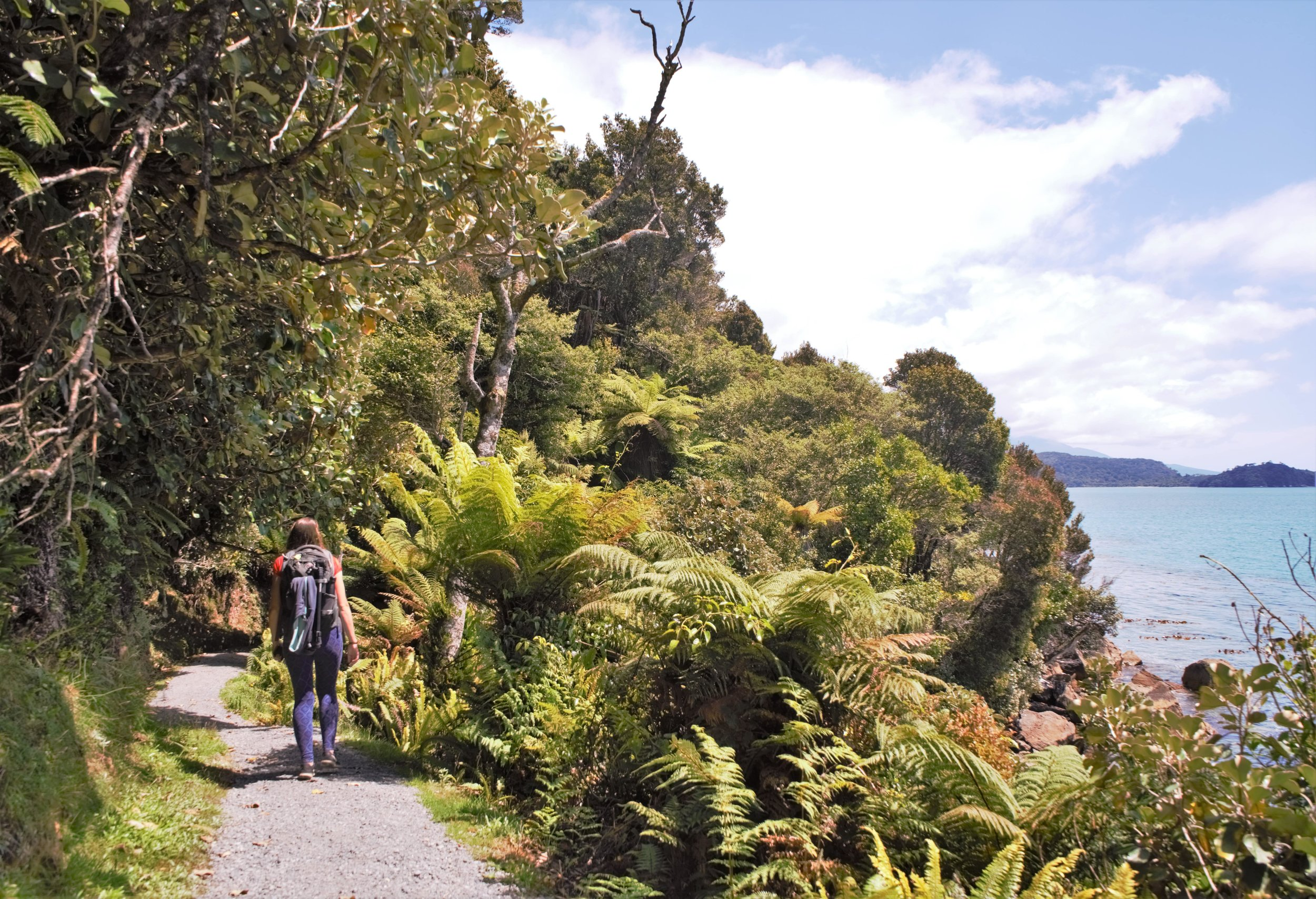 Hiking the Rakiura Track on Stewart Island, New Zealand