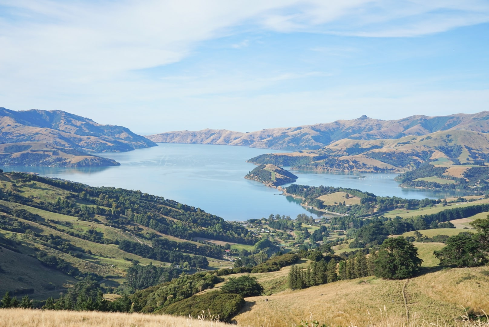 New Zealand Road Trip Guide