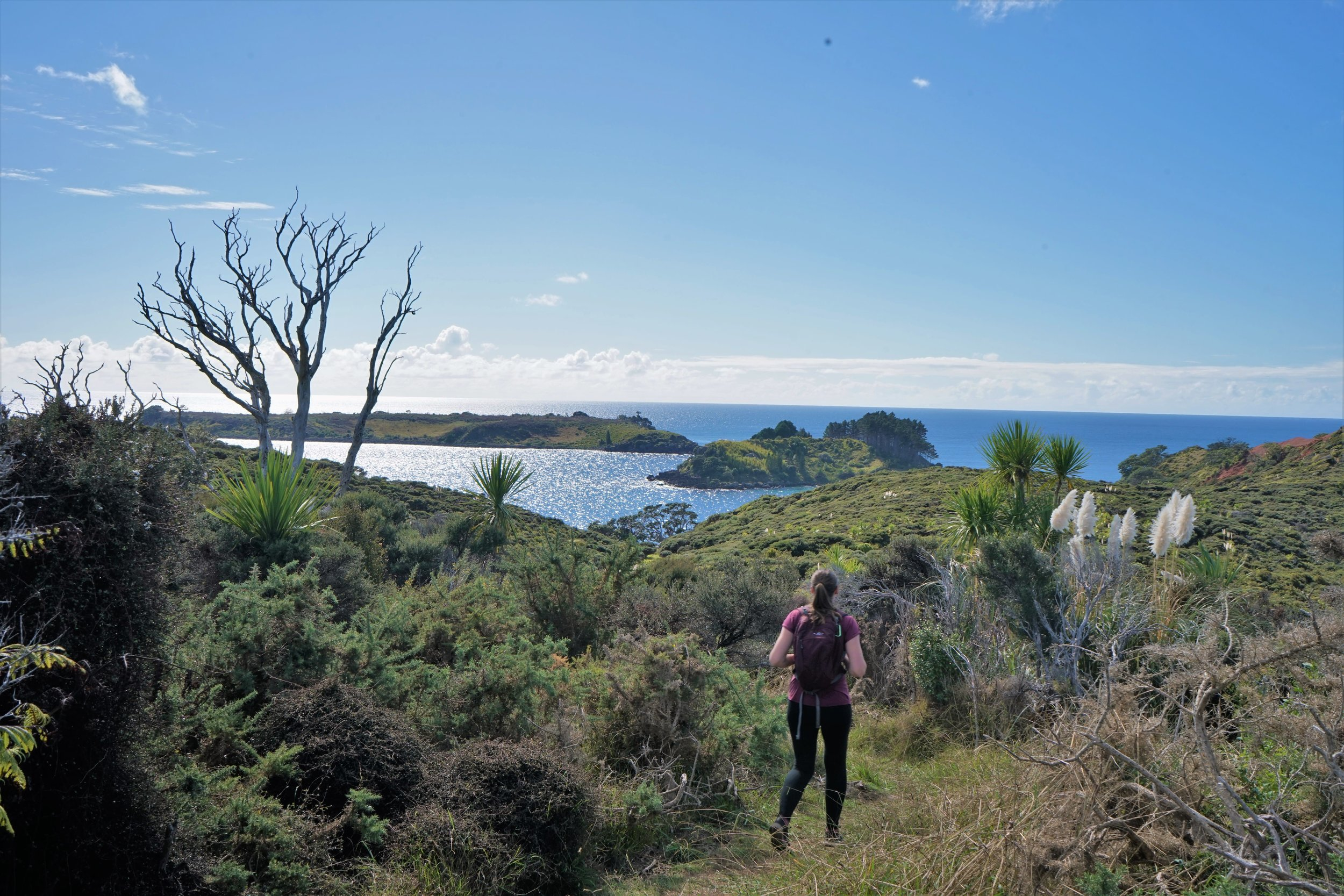 Northland Peninsula walk, Northland Itinerary, New Zealand
