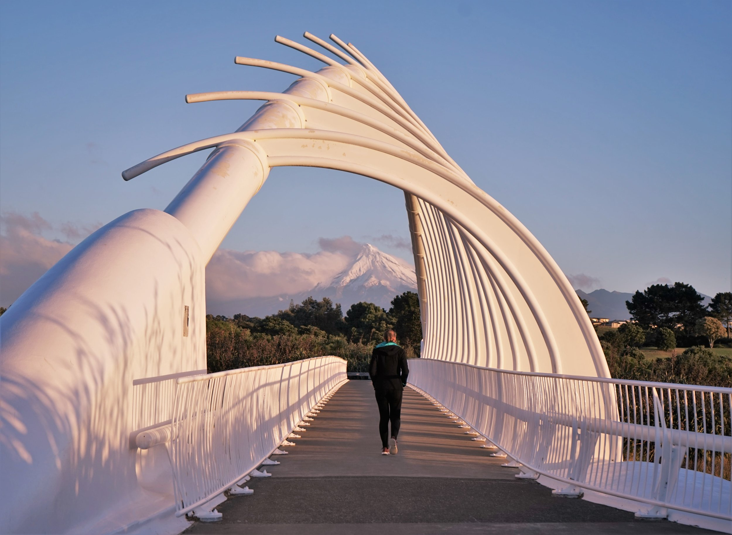 One of the best things to see in New Plymouth is the Te Rewa Rewa bridge.