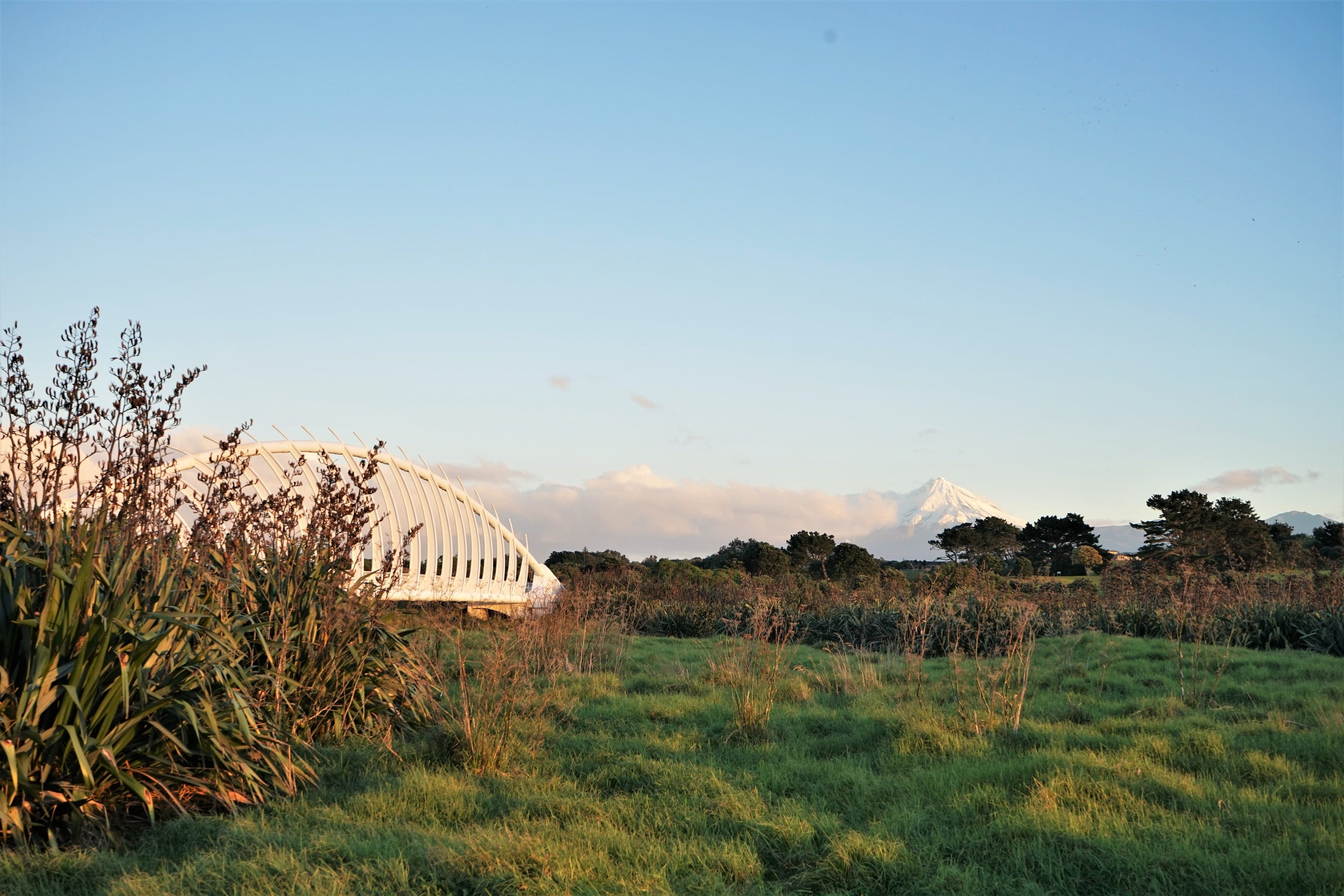 Its a beautiful region and there are plenty of things to do in New Plymouth.