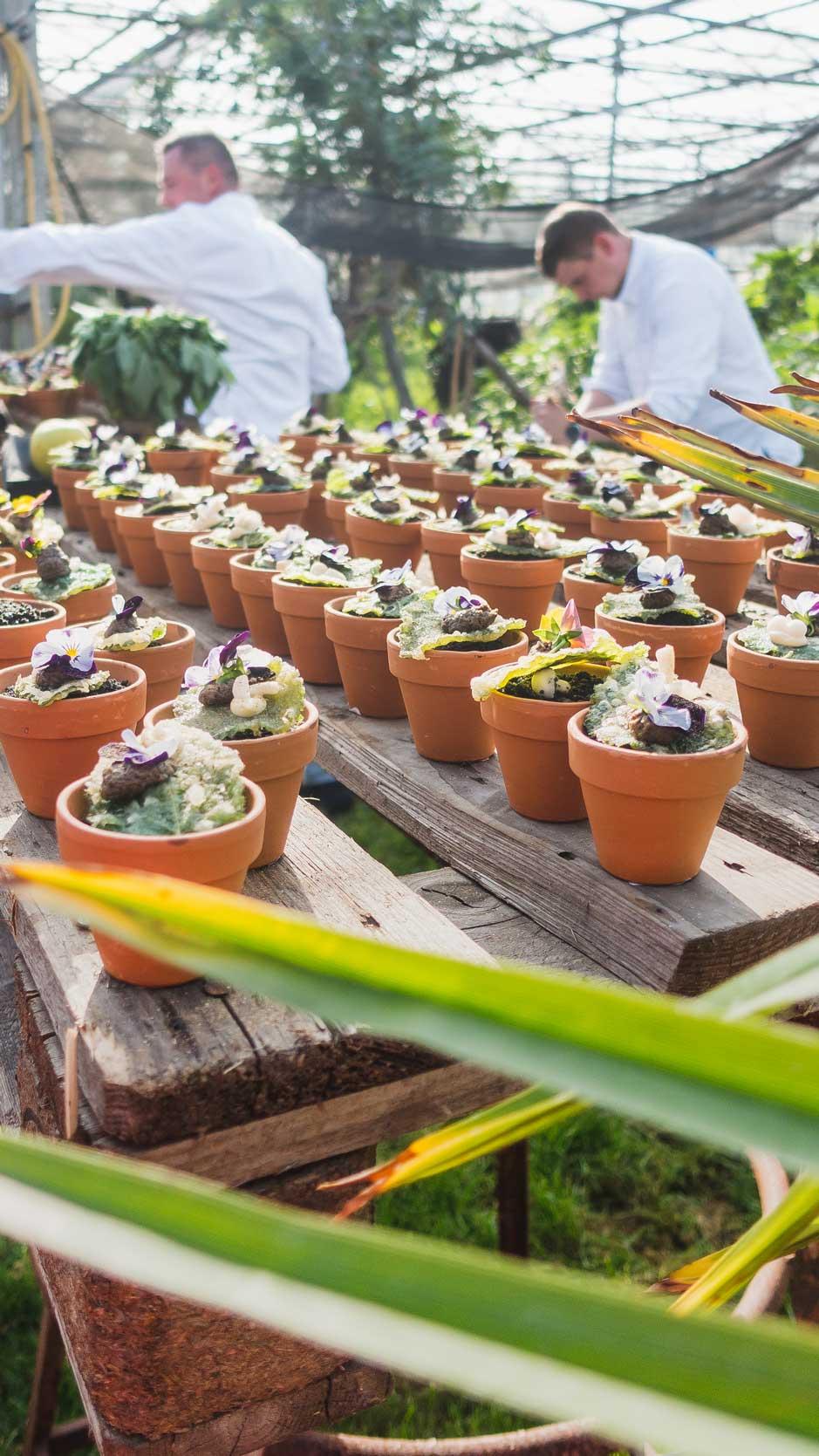 Culinary-Innovators-2.jpg