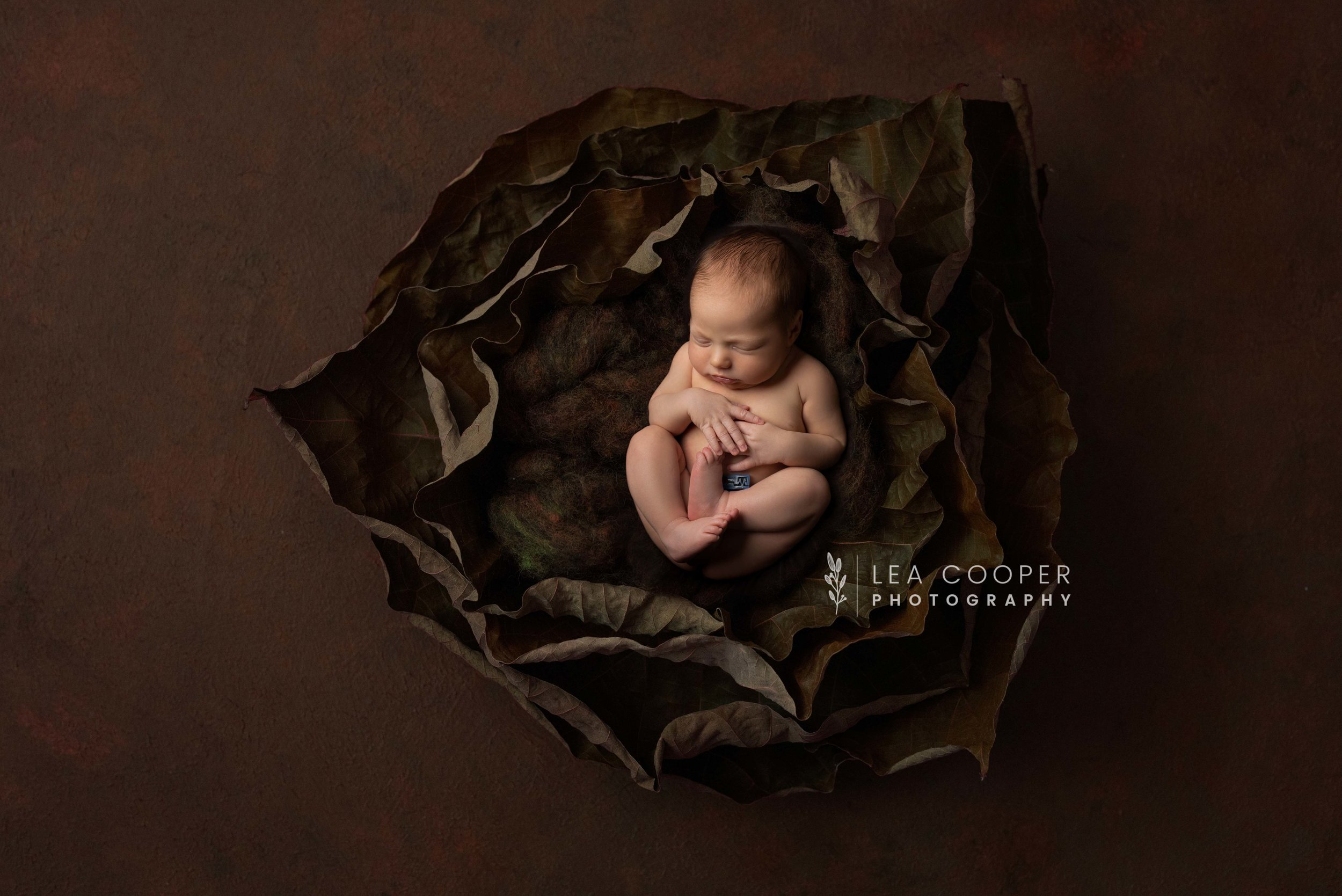 newborn-photography-willenhall-lea-cooper-photography-wolverhampton-baby-photographer-birmingham-west-midlands-uk-oliver--1.jpg