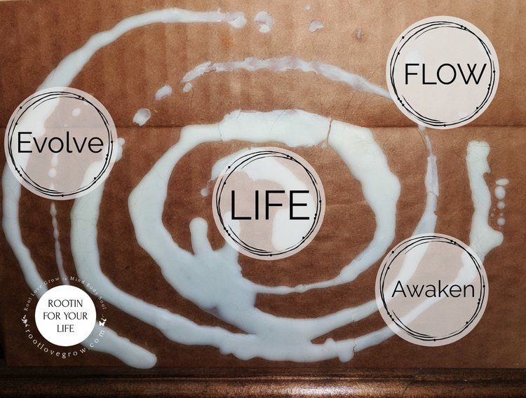 life+flow2.jpg