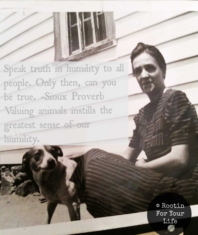 value animals.jpg
