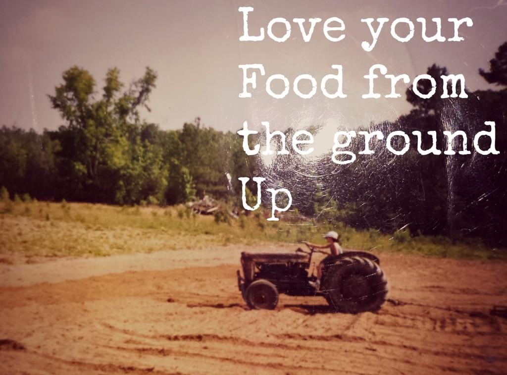food ground.jpg