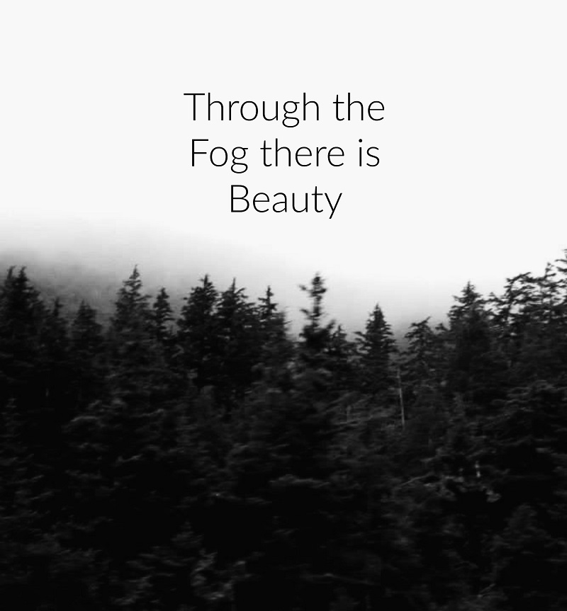 fog small.jpg