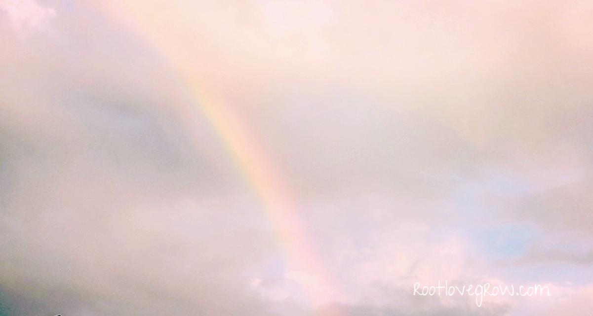 rainbow+banner.jpg