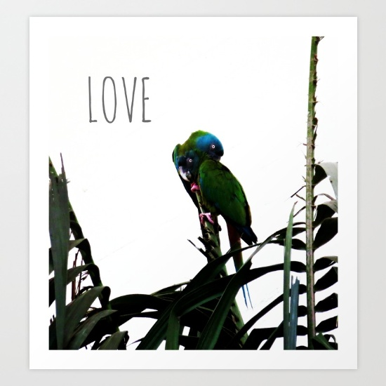 something-about-love-tropical-nature-photograph-prints.jpg