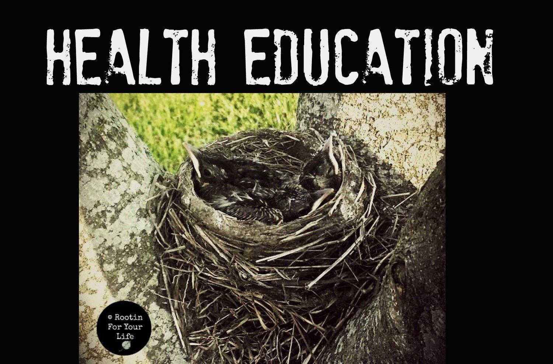 nest+health.jpg