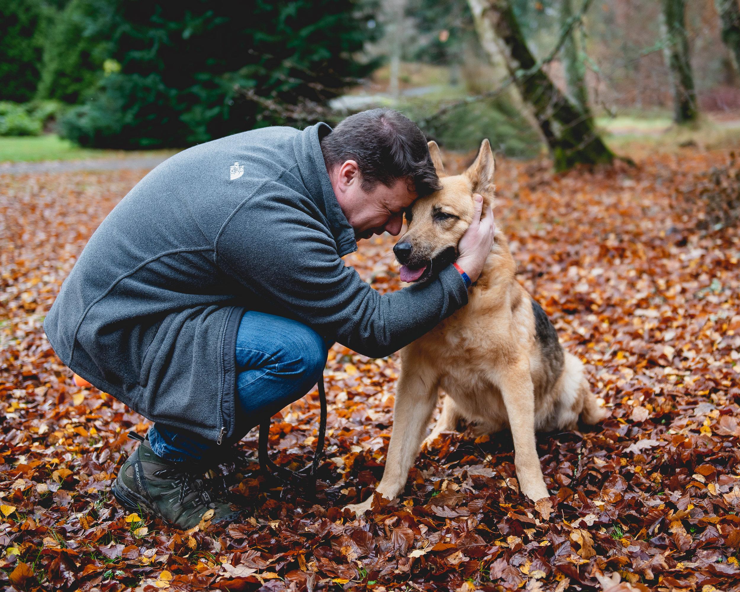 Dog Photography -
