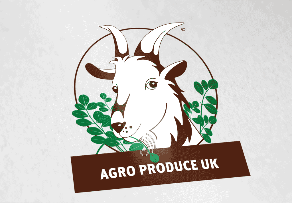 AGRO-2.png