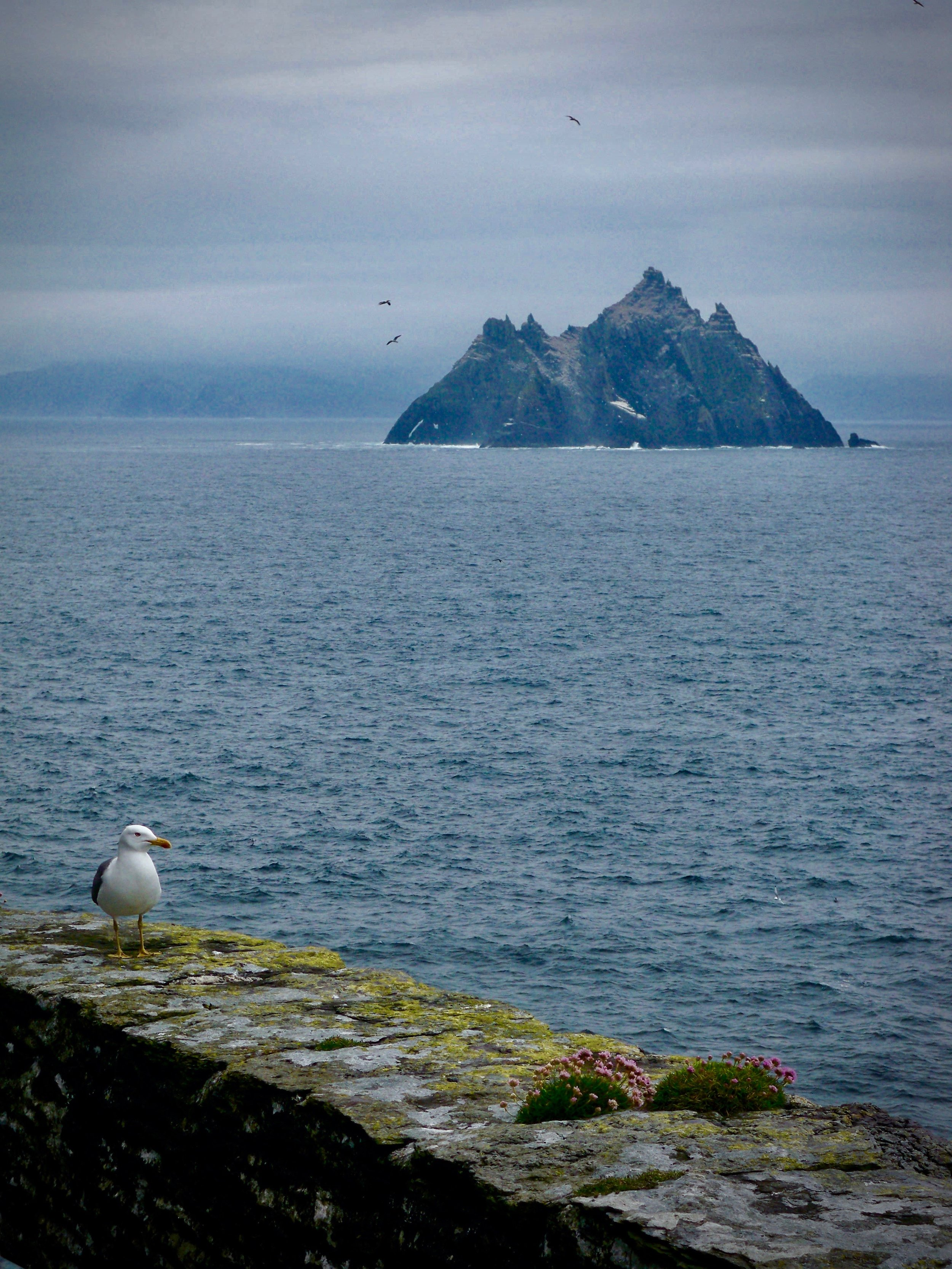 Skellig Michael ~ Ireland