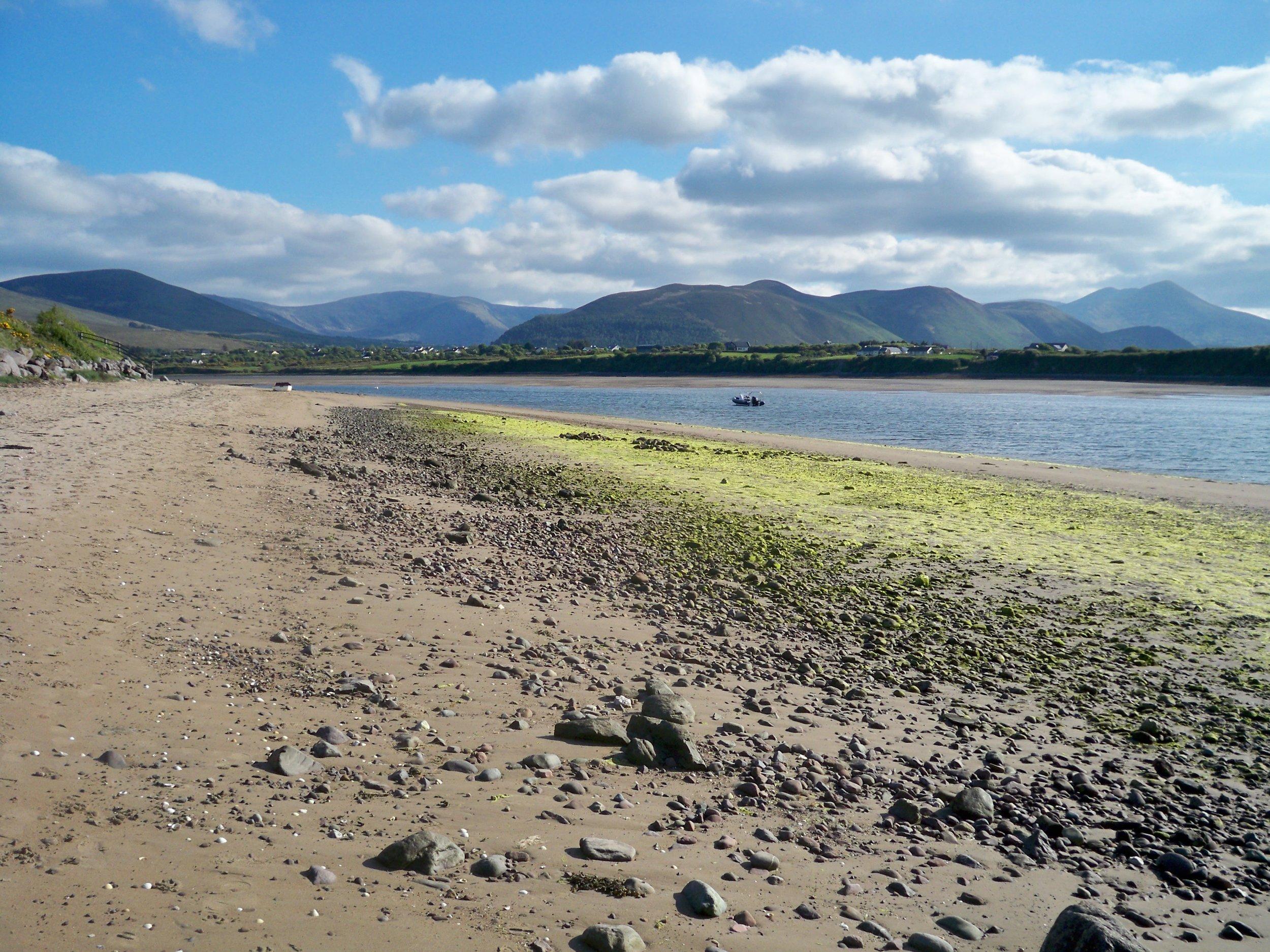 Beach Near Glenbeigh ~ Ring of Kerry, Ireland