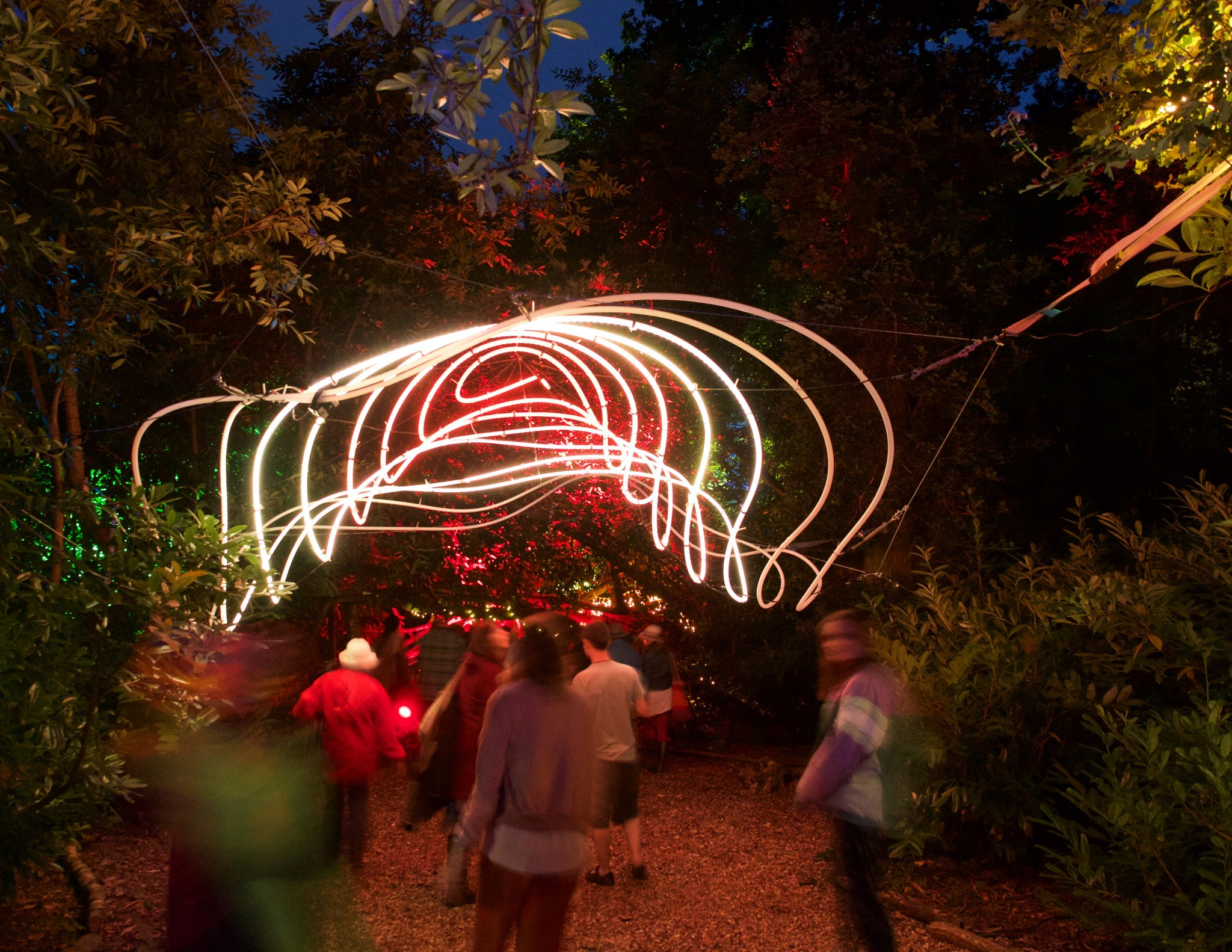 Spiral of Lights Interactive Installation in a Forest