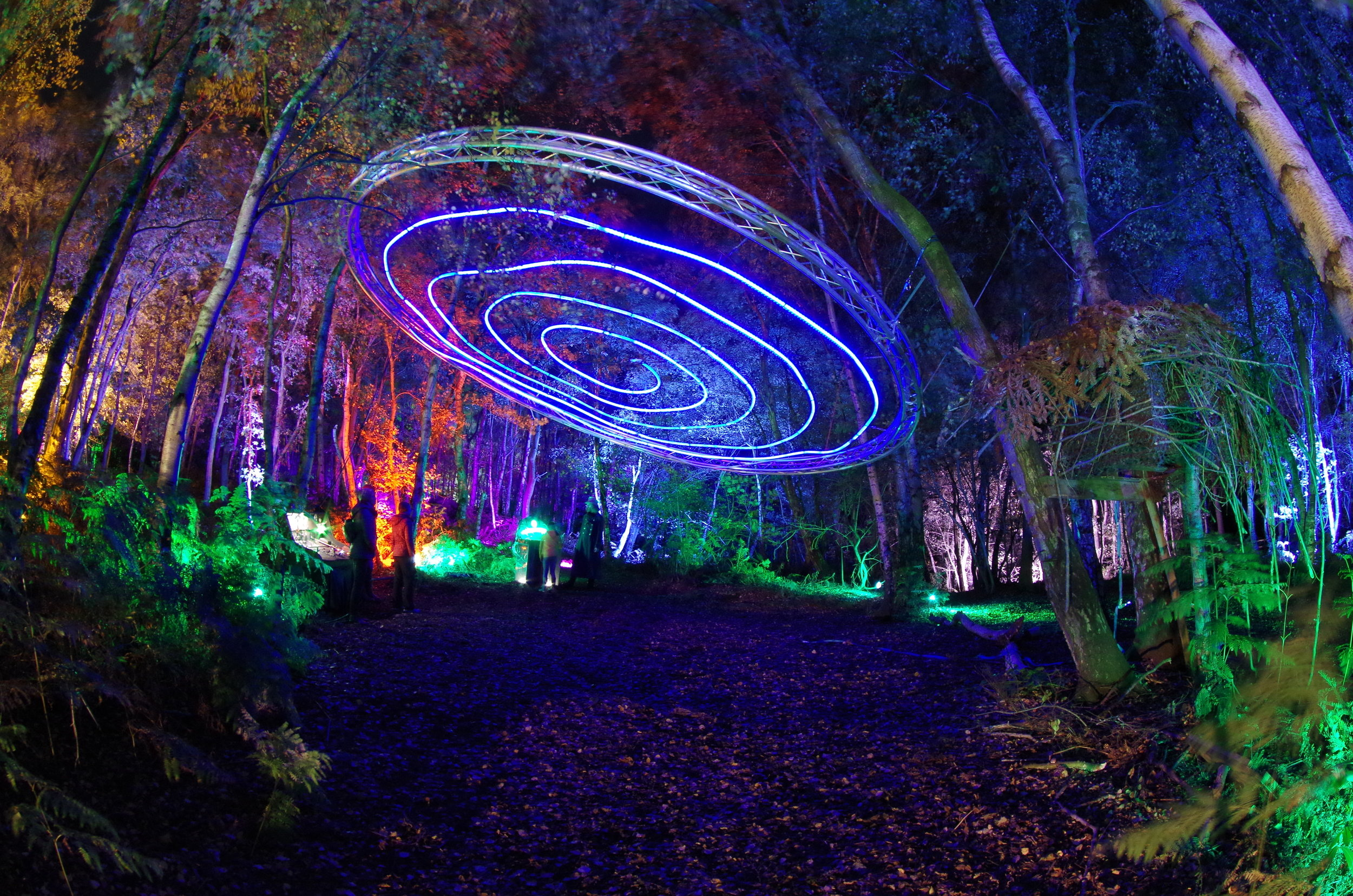 Spiral of Lights Magical Woodland 2018 copyright Rob Stanley