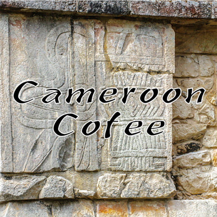 Volcanica Cameroon Organic Coffee