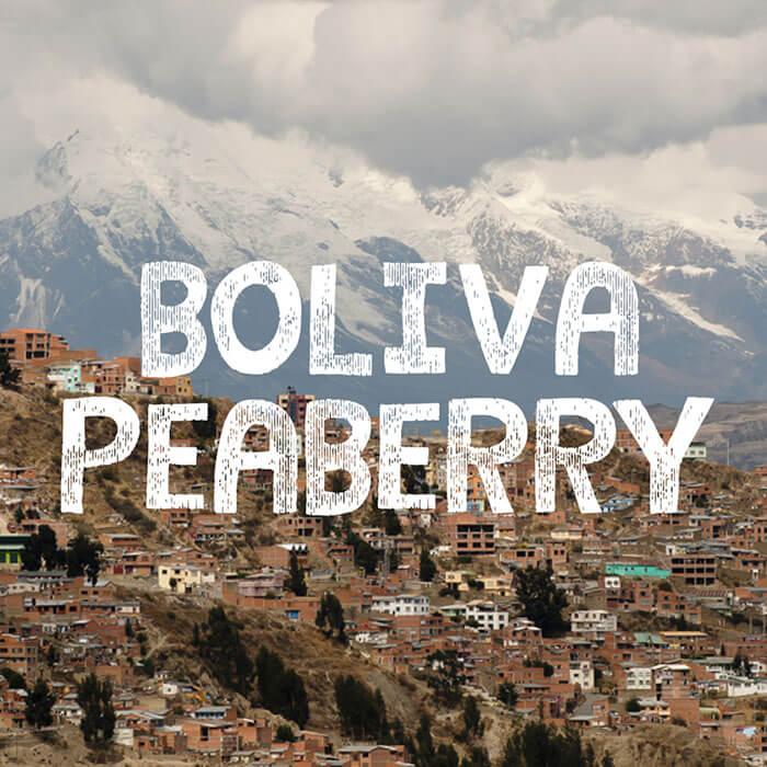 Volcanica Bolivia Peaberry Organic Coffee
