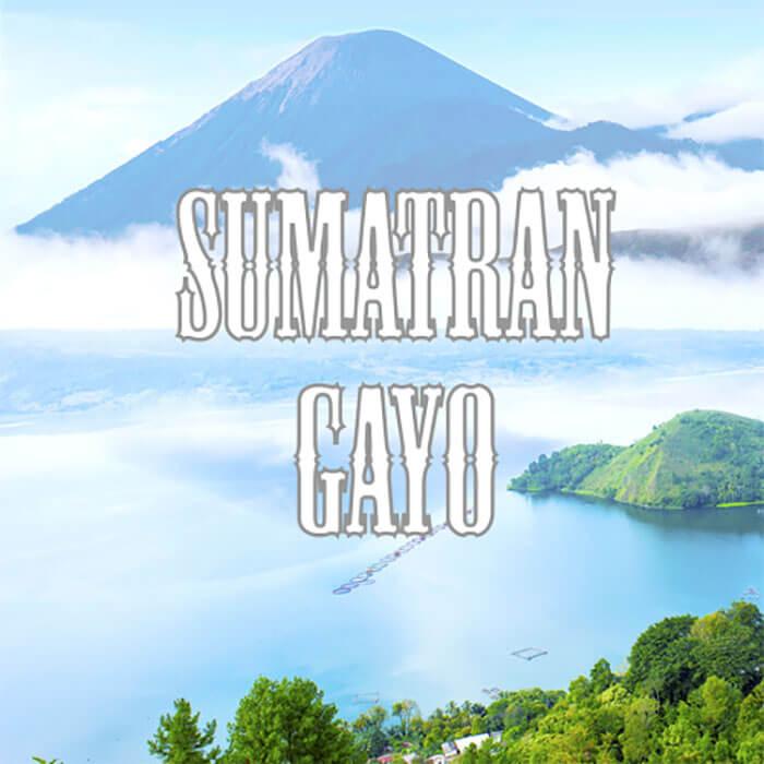 Volcanica Sumatran Gayo Coffee