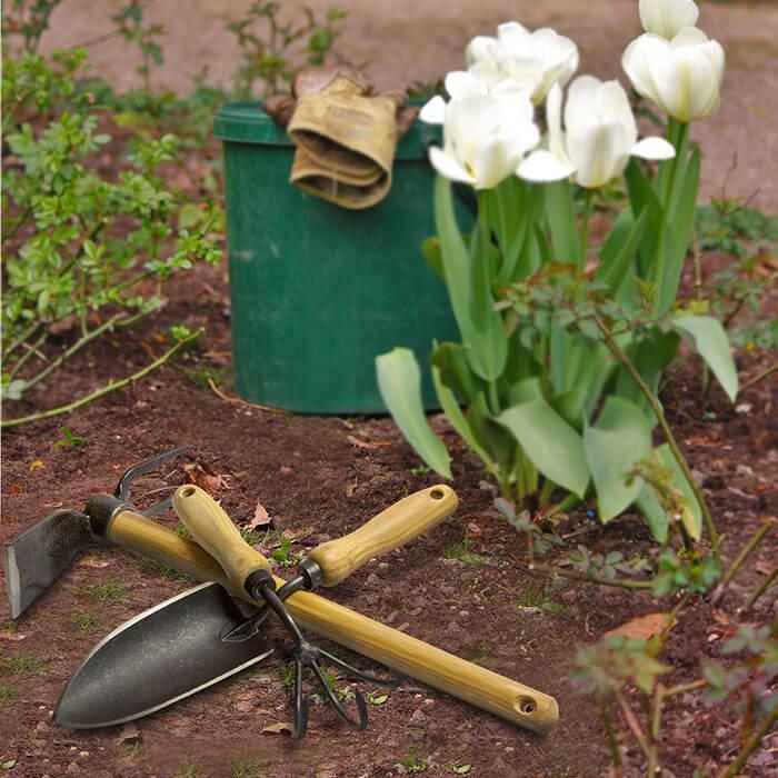 Garden Perfect Garden Tool Set