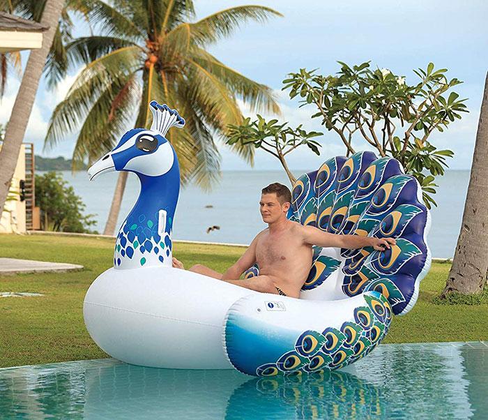 Hoovy Peacock Float