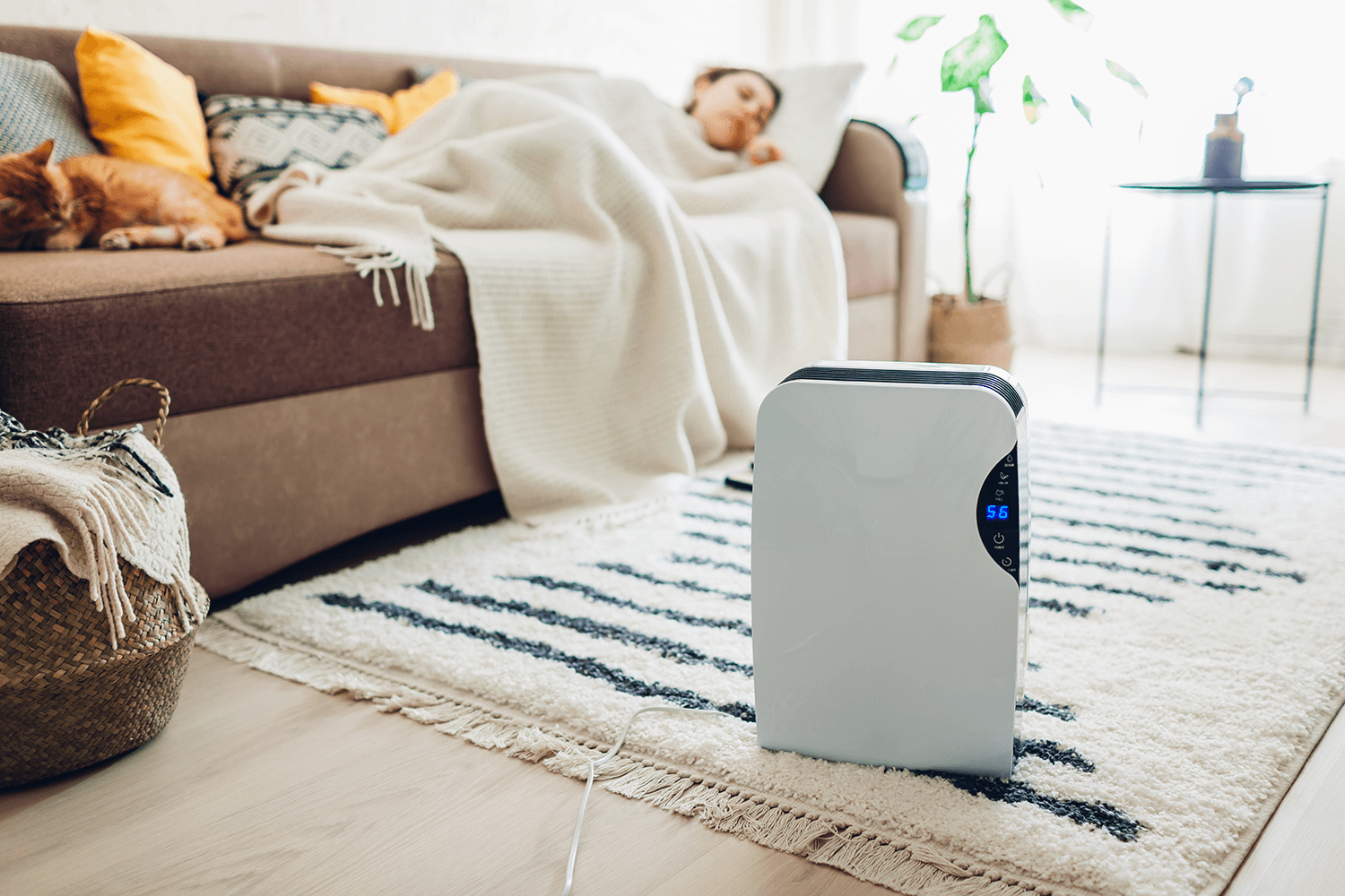 Top Rated Eco-Friendly Healthy Humidifiers