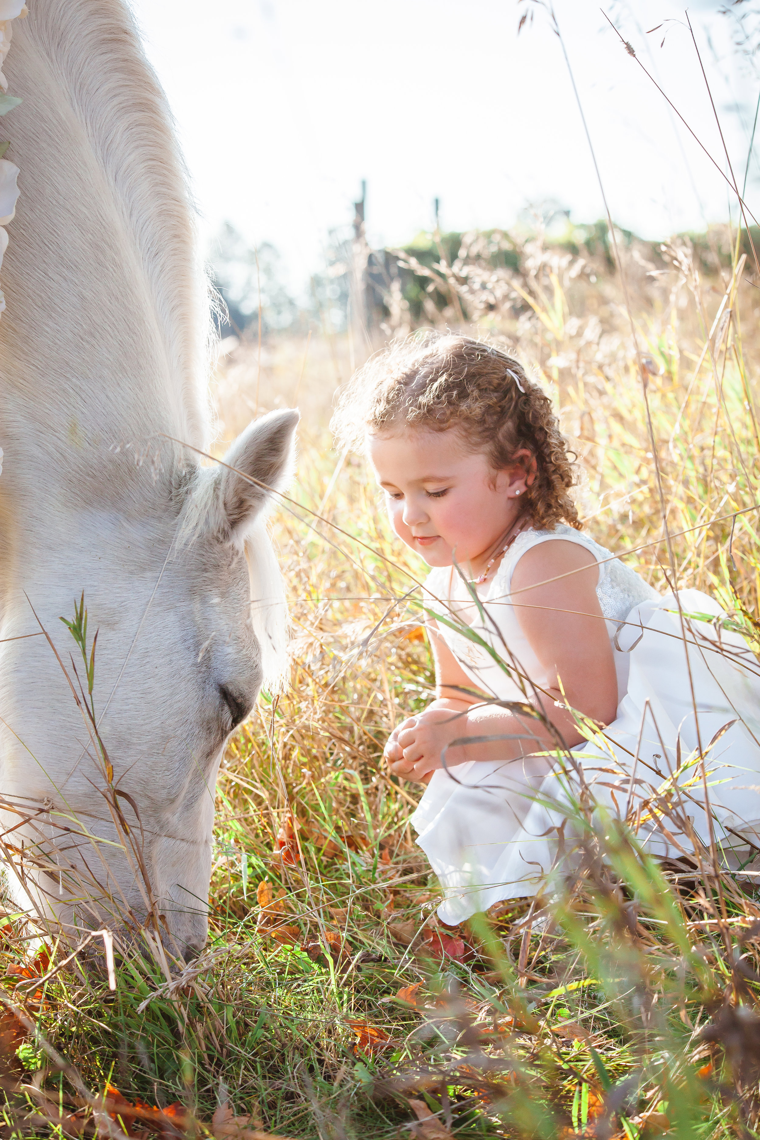 Amy D Photography Barrie Family & Children Photography Unicorn Mini Session-15.jpg