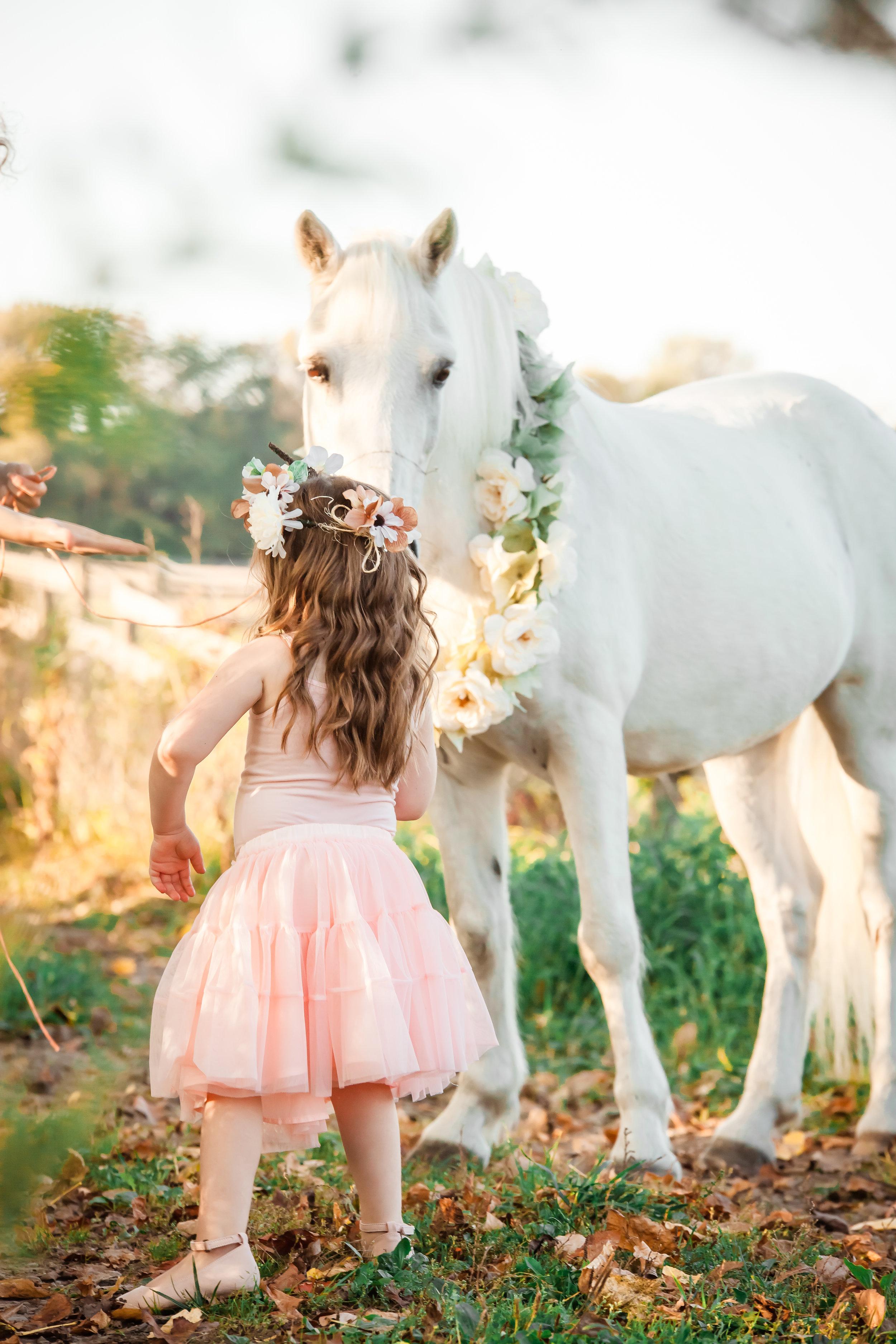 Amy D Photography Barrie Children & Family Photography Unicorn Mini Sessions Unicorn Photo Session- Little Girl Photo Session-24.jpg