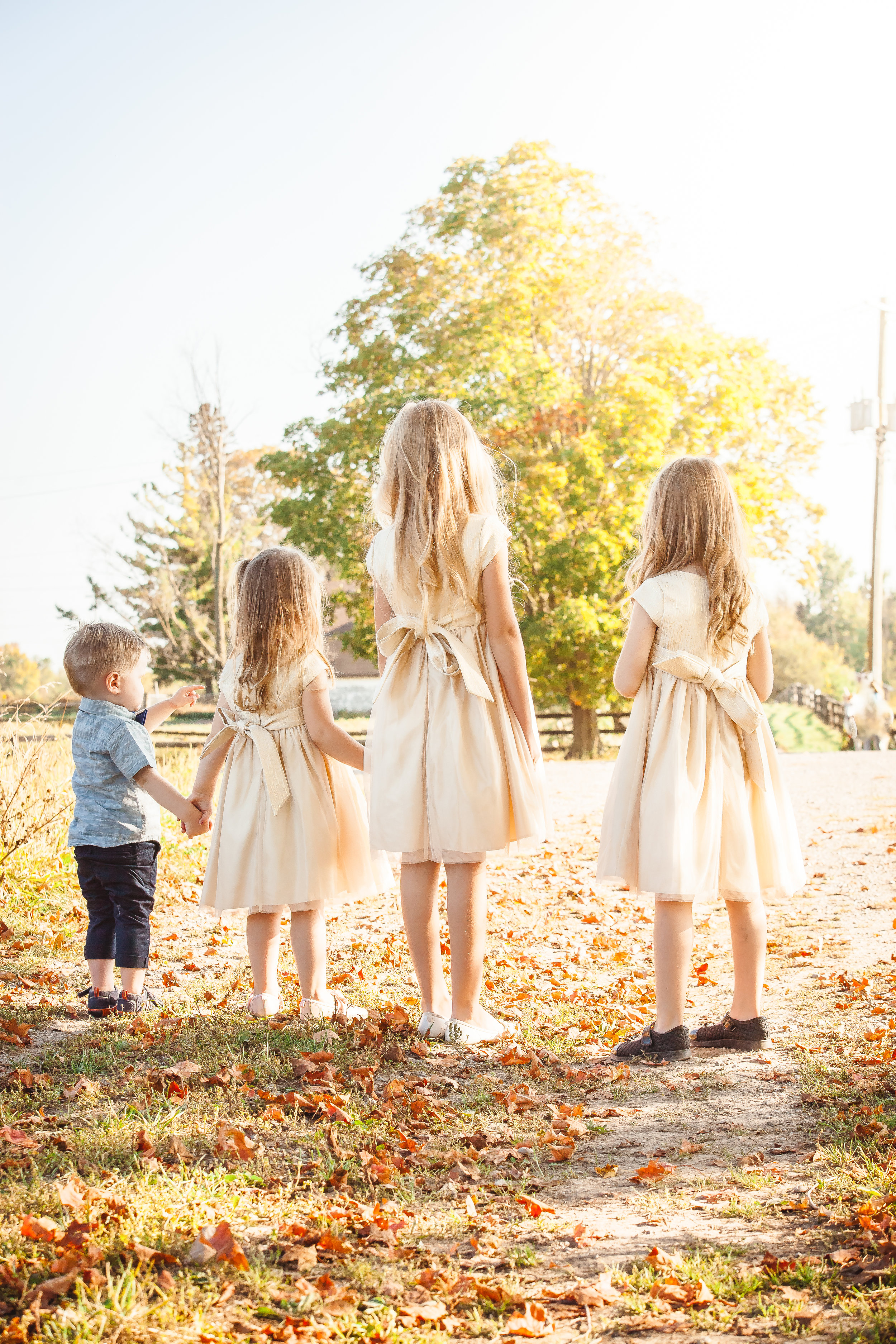 Amy D Photography Barrie Family & Children Photography Unicorn Mini Session-14.jpg