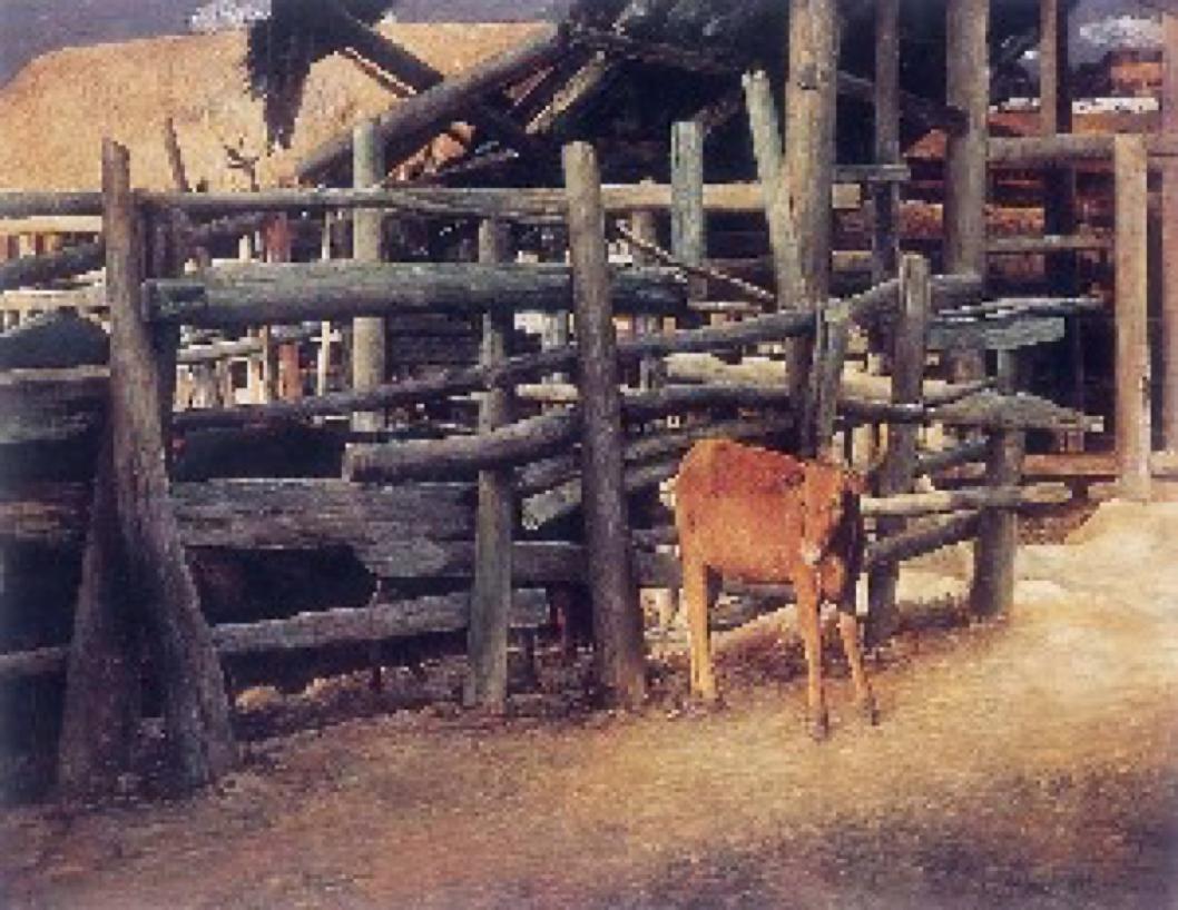 Yue Liao   Newborn Calf , 10th, 2004